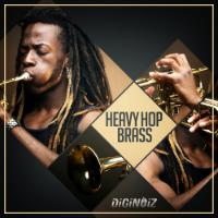 Brass anyone?? – Heavy Hop Brass By DiGiNOiZ, free melodic brass loops